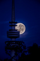 Towering Moon